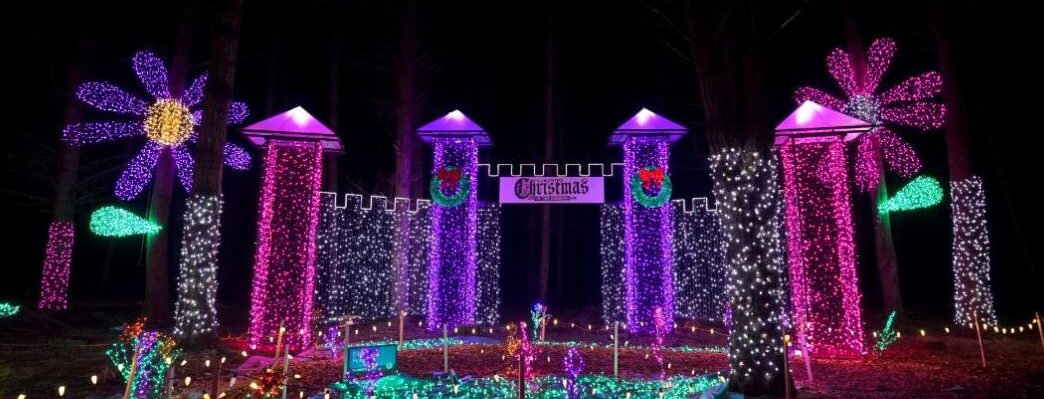 Princess Castle Light Display